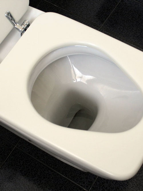 Padded toilet seats are easy to install