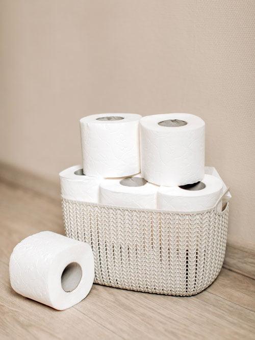 Toilet Paper vs Bidet